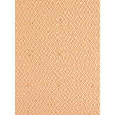 Профилактика Topy Verasem 1.5мм 1 лист (60х96см) бежевый